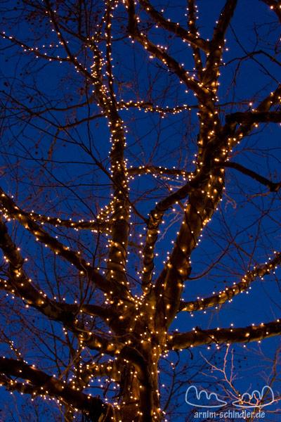 Weihnachtsdekoration an einem Baum