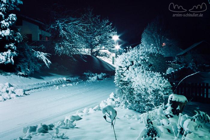 verschneite Hecke und Zaun bei Nacht