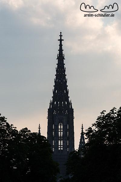 Ulmer Münster von der Gänstorbrücke aus.
